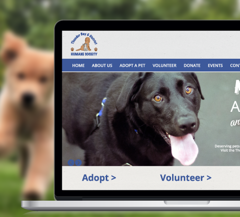 HumaneSociety_FeaturedImage